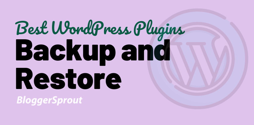 9 Best WordPress Plugins For Backup and Restore